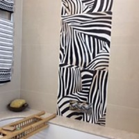 Zebra Install 2014